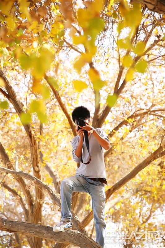 壁纸 风景 森林 桌面 533_800 竖版 竖屏 手机